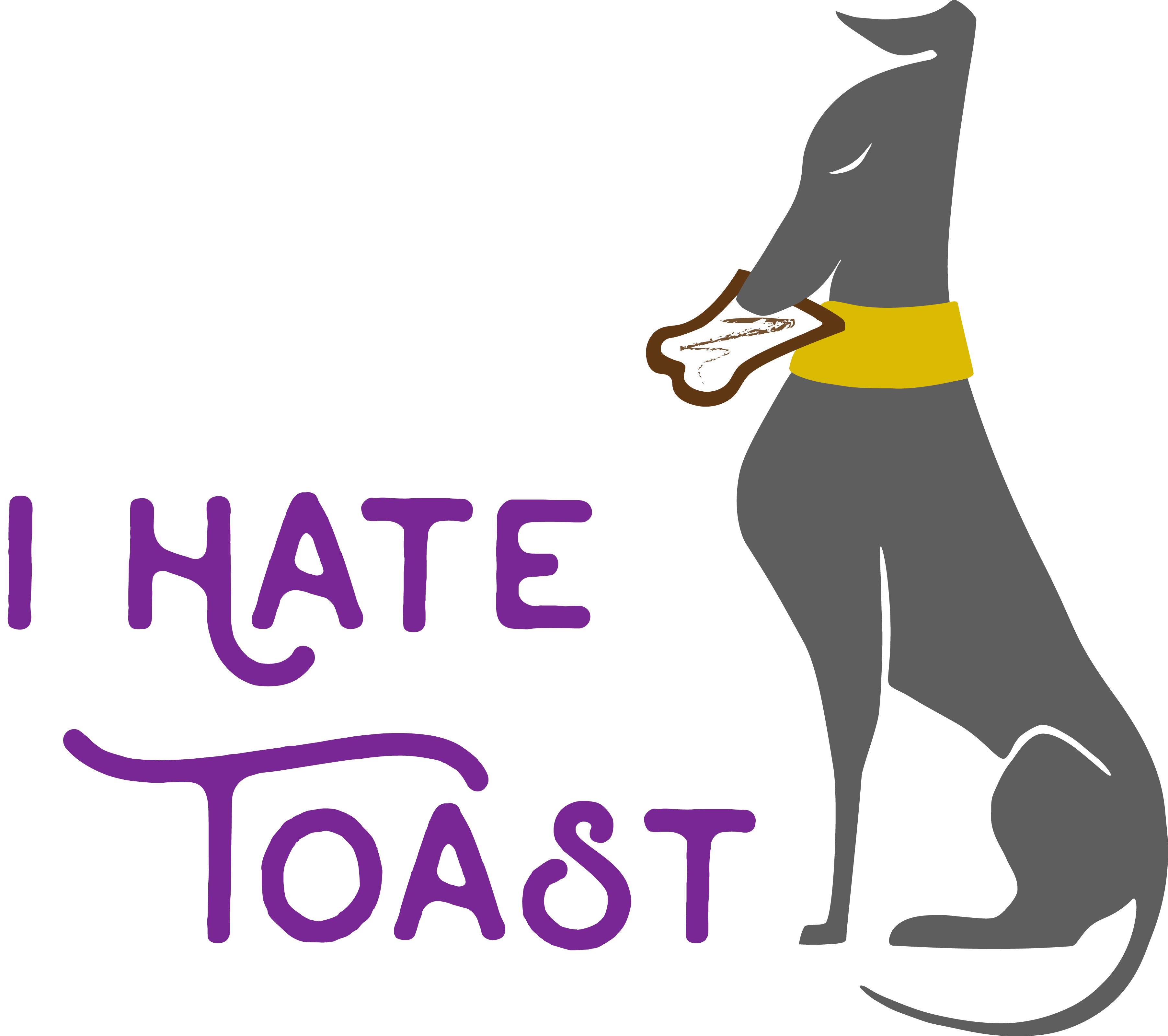 greyhound eating toast